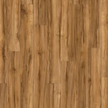 Shaw Floors SFA Casa Plus Frutta 00609_503SA