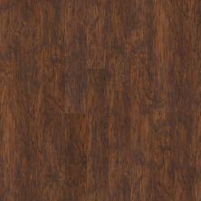 Shaw Floors SFA Casa Plus Rosso 00710_503SA