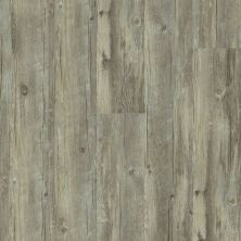 Shaw Floors SFA Mantua Plus Roma 00507_505SA