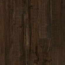 Shaw Floors SFA Mantua Plus Parma 00734_505SA