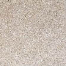 Shaw Floors Shaw Flooring Gallery Lockwood Tropic Pearl 00100_5073G