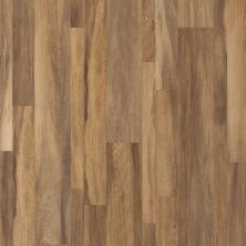 Shaw Floors Resilient Home Foundations Tapestry Mix Plus Gran Sasso Jatoba 00608_507RG