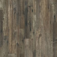 Shaw Floors Resilient Home Foundations Tapestry Mix Plus Calabria Pine 00738_507RG