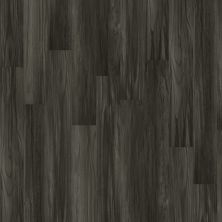Shaw Floors Vinyl Home Foundations Tracery Plus Grandstand 00902_512RG