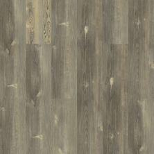 Shaw Floors Vinyl Home Foundations Southern Pine 720c Plus Pitch Pine 00167_513RG