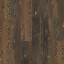 Shaw Floors Resilient Residential Coastal Pine 720c Plus Forest Pine 00812_514SA
