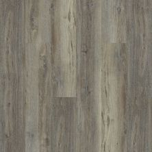Shaw Floors Resilient Property Solutions White Oak 720c Plus Silver Oak 05003_516RG