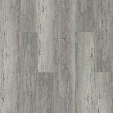 Shaw Floors Resilient Property Solutions White Oak 720c Plus Wye Oak 05004_516RG