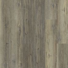 Shaw Floors Resilient Property Solutions White Oak 720c Plus Sandy Oak 05005_516RG