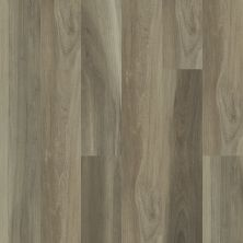 Shaw Floors Resilient Residential Whiskey Oak 720c Plus Chestnut Oak 05010_516SA