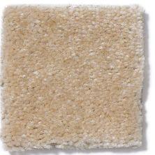Shaw Floors Atherton Toast 29106_52029