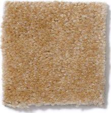 Shaw Floors Atherton Golden Grain 29200_52029