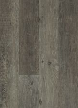 Shaw Floors SFA Michelangelo HD Plus Ebano Oak 00904_522SA