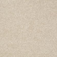 Shaw Floors Jet Set Stucco 00105_52349