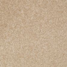 Shaw Floors Jet Set Crisp Linen 00702_52349