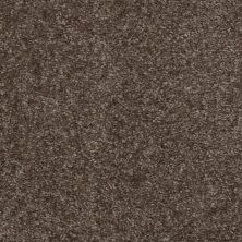 Shaw Floors Jet Set Kodiak Brown 00709_52349