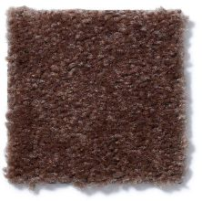 Shaw Floors Cascade II Leather Brown 00774_52350