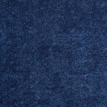Shaw Floors Cascade II Regency Blue 50401_52350