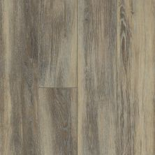 Shaw Floors SFA Sabbia 00161_523SA