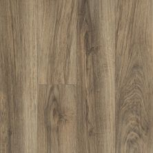 Shaw Floors SFA Sabine Hill Plus Riva 00165_523SA