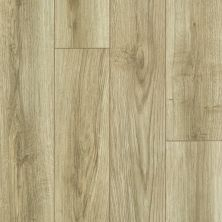Shaw Floors SFA Sabine Hill Plus Rocco 00265_523SA