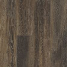 Shaw Floors SFA Sabine Hill Plus Cacao 00779_523SA