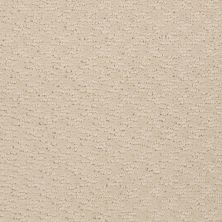 Shaw Floors Shaw Flooring Gallery Modern Beat Winter White 00100_5245G