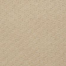 Shaw Floors Shaw Flooring Gallery Modern Beat Linen 00101_5245G