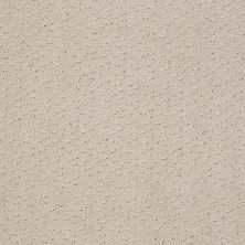 Shaw Floors Shaw Flooring Gallery Modern Beat Sand Pebble 00103_5245G