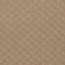 Shaw Floors Shaw Flooring Gallery Modern Beat Field Stone 00105_5245G
