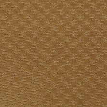 Shaw Floors Shaw Flooring Gallery Modern Beat Golden Wheat 00201_5245G