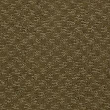 Shaw Floors Shaw Flooring Gallery Modern Beat Organic Leaf 00300_5245G