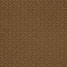 Shaw Floors Shaw Flooring Gallery Modern Beat Fresh Khaki 00700_5245G
