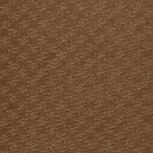 Shaw Floors Shaw Flooring Gallery Modern Beat Saddle 00702_5245G