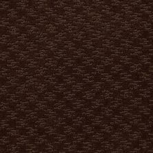 Shaw Floors Shaw Flooring Gallery Modern Beat Mocha Chip 00705_5245G