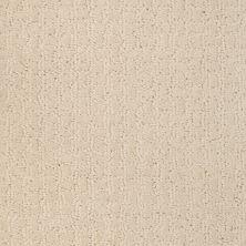 Shaw Floors Shaw Flooring Gallery Modern Beauty Winter White 00100_5246G