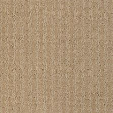 Shaw Floors Shaw Flooring Gallery Modern Beauty Field Stone 00105_5246G