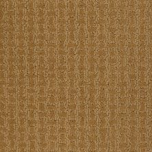 Shaw Floors Shaw Flooring Gallery Modern Beauty Golden Wheat 00201_5246G