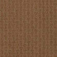 Shaw Floors Shaw Flooring Gallery Modern Beauty Saddle 00702_5246G