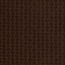 Shaw Floors Shaw Flooring Gallery Modern Beauty Mocha Chip 00705_5246G