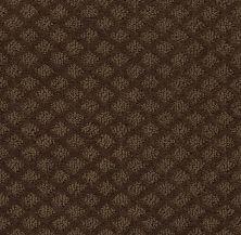 Shaw Floors Shaw Flooring Gallery Modern Charm Mocha Chip 00705_5247G