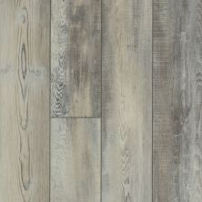 Shaw Floors SFA Antica HD Plus Calcare 00598_524SA