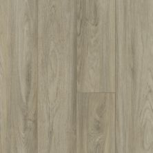 Shaw Floors SFA Antica HD Plus Pisa 01027_524SA