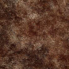 Shaw Floors Mustang Sally Brown Sugar 00702_52500