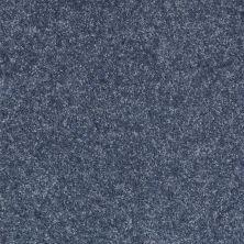 Shaw Floors SFA Spartan Posy 00400_52548