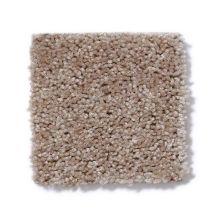 Shaw Floors SFA Spartan Crisp Linen 00702_52548