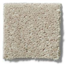 Shaw Floors Shaw Flooring Gallery Ellendale 12′ Misty Taupe 00105_5273G