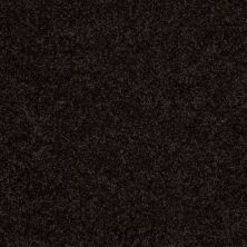 Shaw Floors Shaw Flooring Gallery Ellendale 12′ Armour 00502_5273G