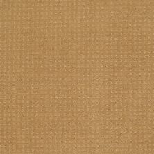 Shaw Floors Shaw Flooring Gallery Colorful Fun Wheat 00201_5283G