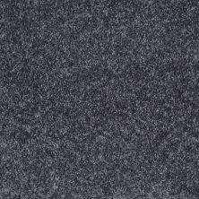Shaw Floors Shaw Flooring Gallery Burtonville Jet Stream 00400_5293G